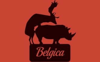 belgica_felixvangroeningen